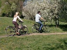 ruszajwpolske.pl/ofertySpecjalne/wybrzeze_baltyckie/weekend_majowy/r,24,102,1,index.html/