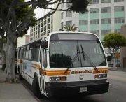 oferta wynajmu mikrobusów
